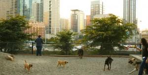 First Hill Neighbourhood, City of Seattle